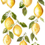 Lemon Drops Decor Transfer™